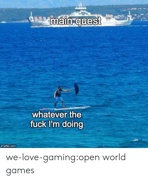 Love, Target, and Tumblr: main quest  whatever the  fuck I'm doing  imgflip.com we-love-gaming:open world games