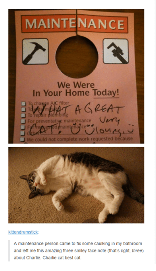 Charlie, Memes, and Charlie Charlie: MAINTENANCE  We Were  In Your Home Today!  To change AC filter  A GREAT  For preventative maintenance  could not complete work requested because  kittendrumstick:  A maintenance person came to fix some caulking in my bathroom  and left me this amazing three smiley face note (that's right, three)  about Charlie. Charlie cat best cat.