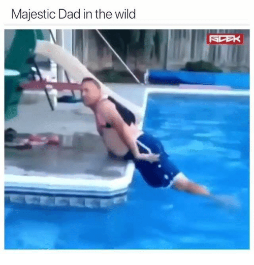 Dad, Wild, and Majestic: Majestic Dad in the wild