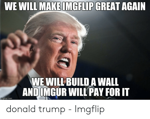 Donald Trump, Trump, and Com: MAKE IMGFLIP GREAT  WE WILL  AGAIN  WE WILLBUILD A WALL  ANDIMGUR WILL PAY FOR IT  mgflip.com donald trump - Imgflip
