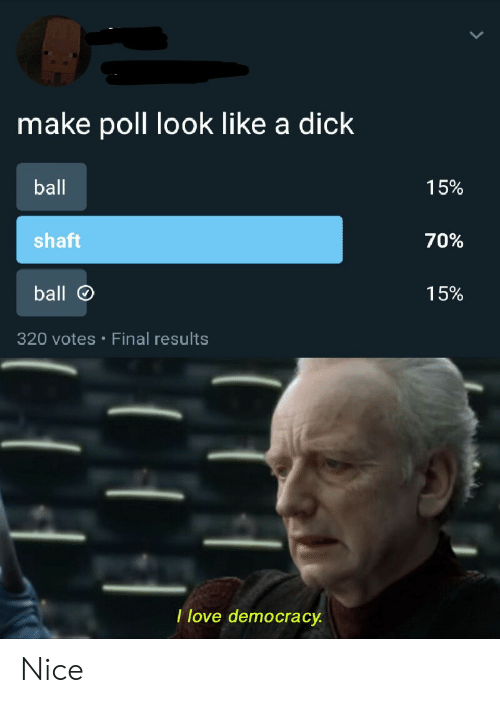 Love, Dick, and Democracy: make poll look like a dick  ball  15%  shaft  70%  ball  15%  320 votes Final results  .  I love democracy Nice