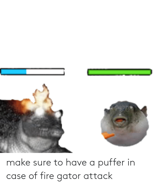 In Case: make sure to have a puffer in case of fire gator attack