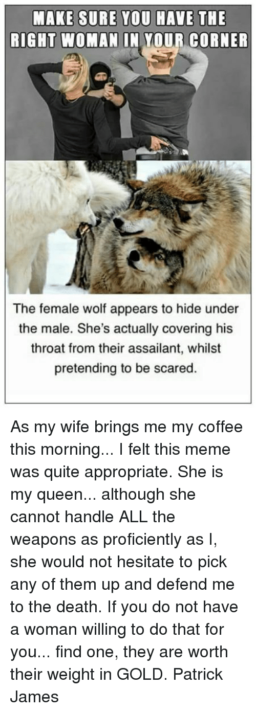 Meme, Memes, and Queen: MAKE SURE YOU HAVE THE  RIGHT WOMAN IN YOUR CORNER  The female wolf appears to hide under  the male. She's actually covering his  throat from their assailant, whilst  pretending to be scared As my wife brings me my coffee this morning... I felt this meme was quite appropriate. She is my queen... although she cannot handle ALL the weapons as proficiently as I, she would not hesitate to pick any of them up and defend me to the death. If you do not have a woman willing to do that for you... find one, they are worth their weight in GOLD.  Patrick James