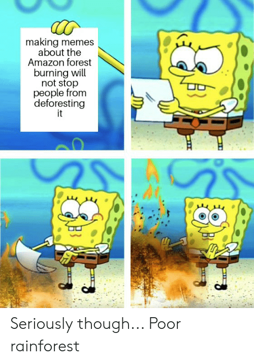 Amazon, Memes, and Reddit: making memes  about the  Amazon forest  burning will  not stop  people from  deforesting  it  SS Seriously though... Poor rainforest