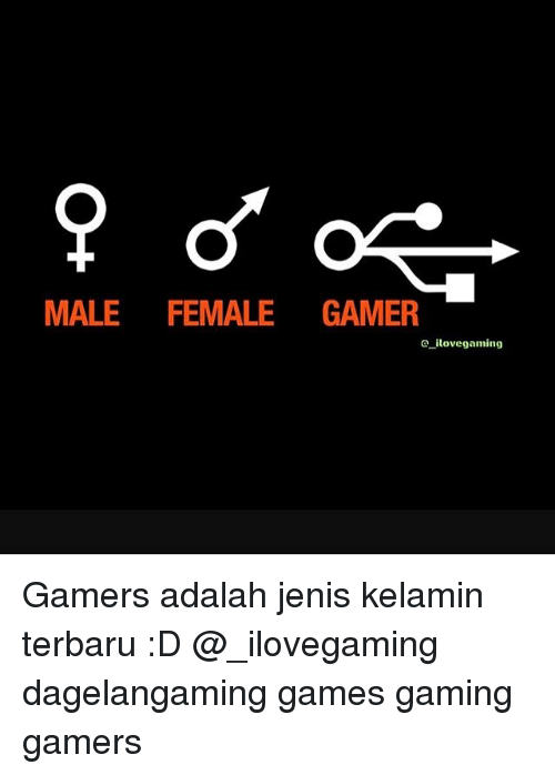 Memes, Games, and Gaming: MALE FEMALE GAMER  a ilove gaming Gamers adalah jenis kelamin terbaru :D @_ilovegaming dagelangaming games gaming gamers