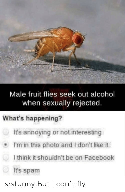 i dont like it: Male fruit flies seek out alcohol  when sexually rejected  What's happening?  It's annoying or not interesting  I'm in this photo and I don't like it  l think it shouldn't be on Facebook  It's spam srsfunny:But I can't fly