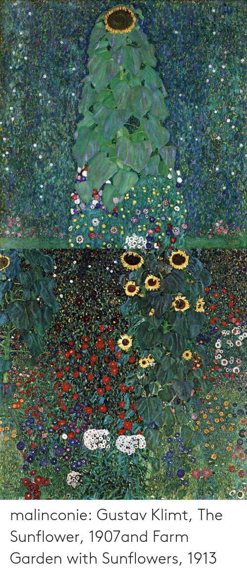 Farm: malinconie: Gustav Klimt, The Sunflower, 1907and Farm Garden with Sunflowers, 1913