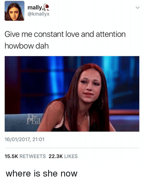 Where Is She: mally,  mallVX  Give me constant love and attention  howbow dah  16/01/2017, 21:01  15.5K  RETWEETS  22.3K  LIKES where is she now