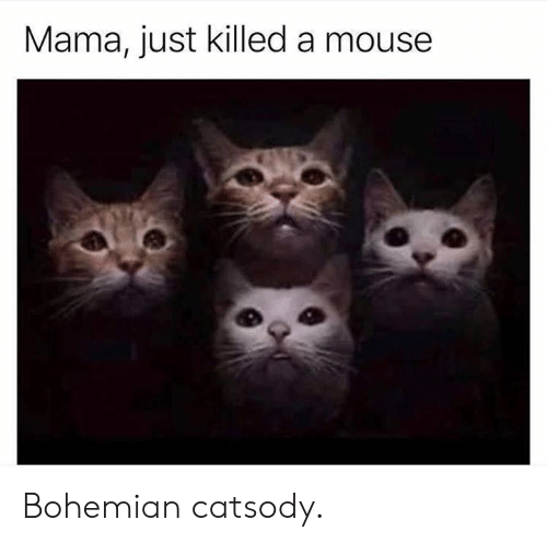 Dank, Mouse, and Bohemian: Mama, just killed a mouse Bohemian catsody.