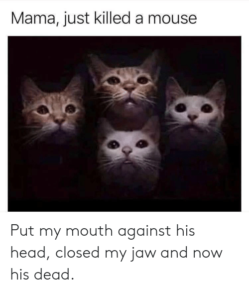 Head, Mouse, and Mama: Mama, just killed a mouse Put my mouth against his head, closed my jaw and now his dead.