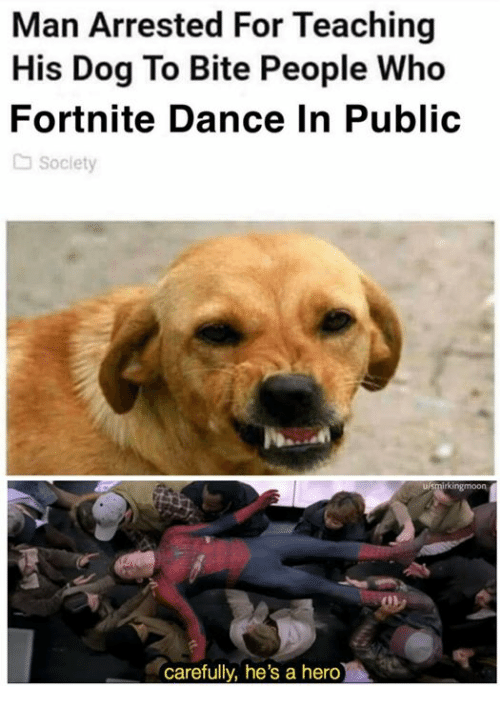 Memes, Dance, and Teaching: Man Arrested For Teaching  His Dog To Bite People Who  Fortnite Dance In Public  Soclety  irkingmoon  0h  carefully, he's a hero