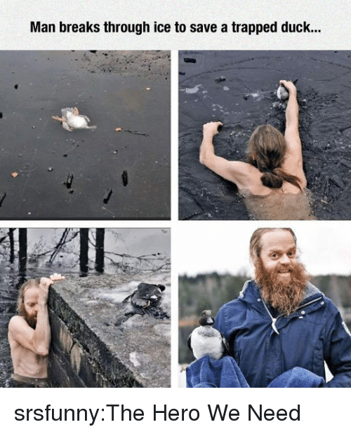 Tumblr, Blog, and Duck: Man breaks through ice to save a trapped duck... srsfunny:The Hero We Need