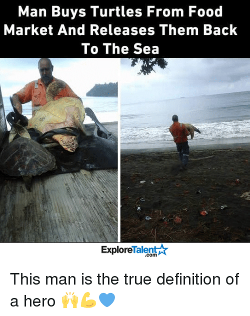Turtling: Man Buys Turtles From Food  Market And Releases Them Back  To The Sea  Talent  Explore This man is the true definition of a hero 🙌💪💙