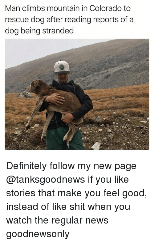 Definitely, Funny, and News: Man climbs mountain in Colorado to  rescue dog after reading reports of a  dog being stranded Definitely follow my new page @tanksgoodnews if you like stories that make you feel good, instead of like shit when you watch the regular news goodnewsonly