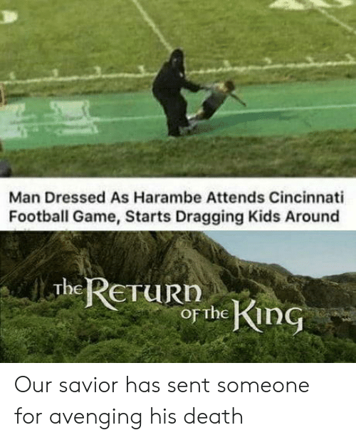 return of the king: Man Dressed As Harambe Attends Cincinnati  Football Game, Starts Dragging Kids Around  The RETURN  of the KinG Our savior has sent someone for avenging his death