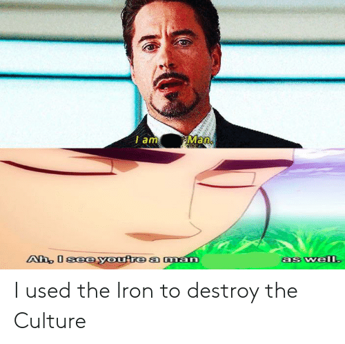 Reddit, Iron, and Culture: Man  I am  Ah, I seeyoutre aman  as welI I used the Iron to destroy the Culture