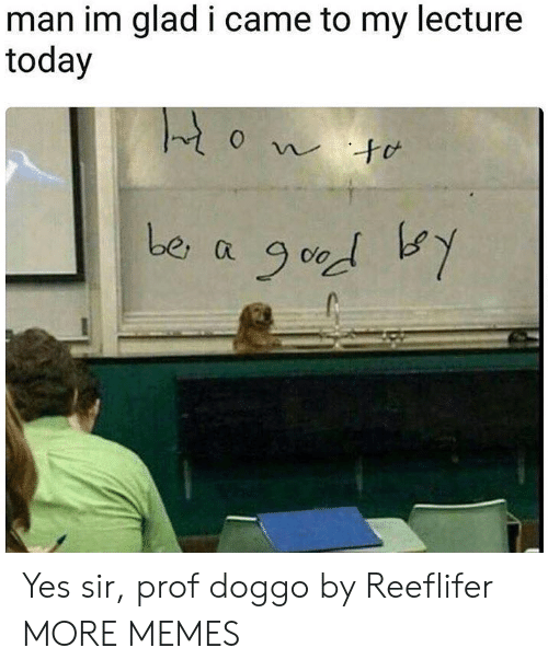 Dank, Memes, and Target: man im glad i came to my lecture  today  0 Yes sir, prof doggo by Reeflifer MORE MEMES