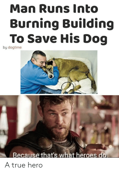 True Hero: Man Runs Into  Burning Building  To Save His Dog  by dogtime  Because that's what heroes do A true hero