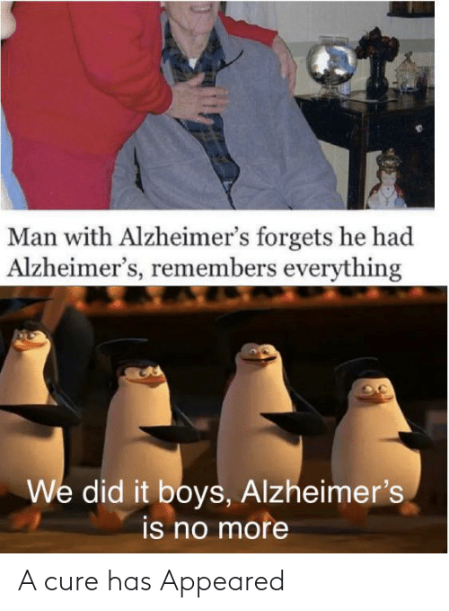 boys: Man with Alzheimer's forgets he had  Alzheimer's, remembers everything  We did it boys, Alzheimer's  is no more A cure has Appeared