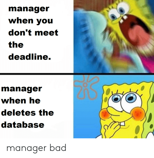 Bad, Database, and You: manager  when you  don't meet  the  deadline.  manager  when he  deletes the  database manager bad