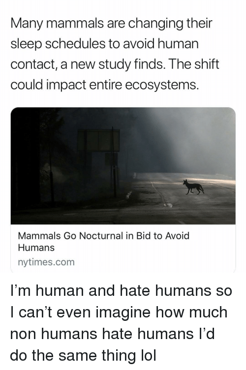 nocturnal: Many mammals are changing their  sleep schedules to avoid human  contact, a new study finds. The shift  could impact entire ecosystems.  Mammals Go Nocturnal in Bid to Avoid  Humans  nytimes.com I'm human and hate humans so I can't even imagine how much non humans hate humans I'd do the same thing lol