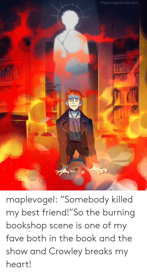 """Fave: Maplevogel.tumblr.com maplevogel:  """"Somebody killed my best friend!""""So the burning bookshop scene is one of my fave both in the book and the show and Crowley breaks my heart!"""
