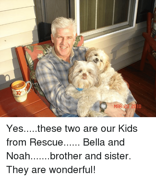 Memes, Noah, and Kids: MAR 20 2010 Yes.....these two are our Kids from Rescue...... Bella and Noah.......brother and sister.  They are wonderful!