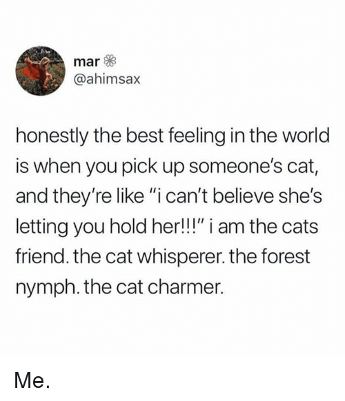 "Cats, Dank, and Best: mar  @ahimsax  honestly the best feeling in the world  is when you pick up someone's cat,  and they're like ""i can't believe she's  letting you hold her!!!"" i am the cats  friend. the cat whisperer. the forest  nymph. the cat charmer. Me."