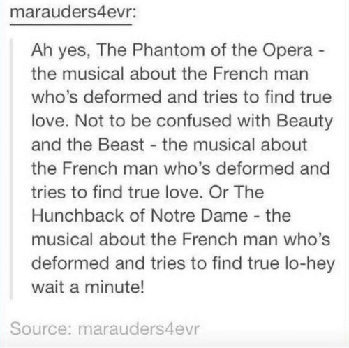 Beauty and the Beast: marauders4evr:  Ah yes, The Phantom of the Opera  the musical about the French man  who's deformed and tries to find true  love. Not to be confused with Beauty  and the Beast the musical about  the French man who's deformed and  tries to find true love. Or The  Hunchback of Notre Dame the  musical about the French man who's  deformed and tries to find true lo-hey  wait a minute!  Source: marauders4evr