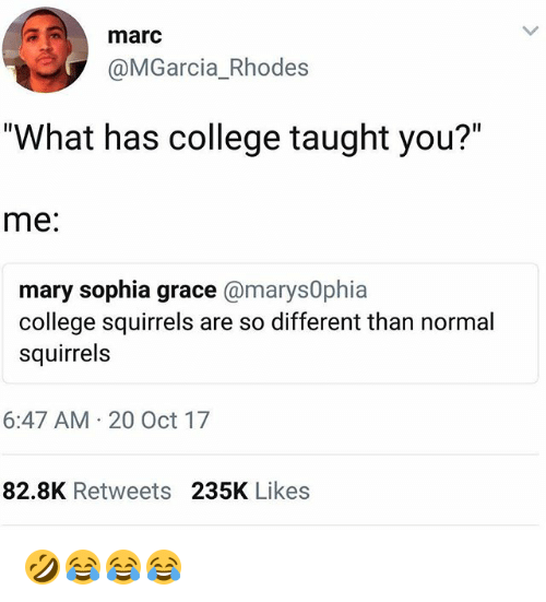 """rhodes: marc  @MGarcia_Rhodes  """"What has college taught you?""""  me:  mary sophia grace @marys0phia  college squirrels are so different than normal  squirrels  6:47 AM 20 Oct 17  82.8K Retweets 235K Likes 🤣😂😂😂"""