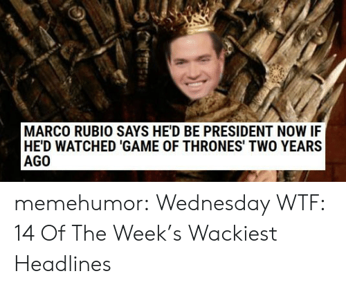 Game of Thrones, Tumblr, and Wtf: MARCO RUBIO SAYS HE'D BE PRESIDENT NOW IF  HE'D WATCHED 'GAME OF THRONES' TWO YEARS  AGO memehumor:  Wednesday WTF: 14 Of The Week's Wackiest Headlines