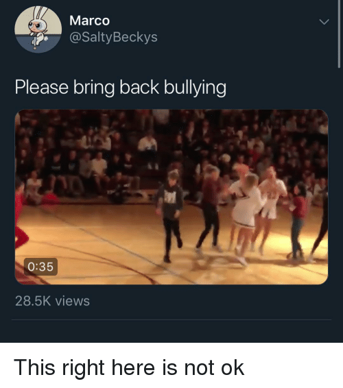 Marco: Marco  @SaltyBeckys  Please bring back bullying  0:35  28.5K views This right here is not ok
