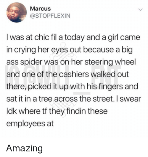 steering wheel: Marcus  @STOPFLEXIN  I was at chic fil a today and a girl came  in crying her eyes out because a big  ass spider was on her steering wheel  and one of the cashiers walked out  there, picked it up with his fingers and  sat it in a tree across the street. I swear  ldk where tf they findin these  employees at Amazing