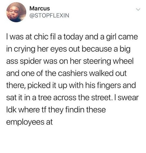steering wheel: Marcus  @STOPFLEXIN  I was at chic fil a today and a girl came  in crying her eyes out because a big  ass spider was on her steering wheel  and one of the cashiers walked out  there, picked it up with his fingers and  sat it in a tree across the street. I swear  ldk where tf they findin these  employees at