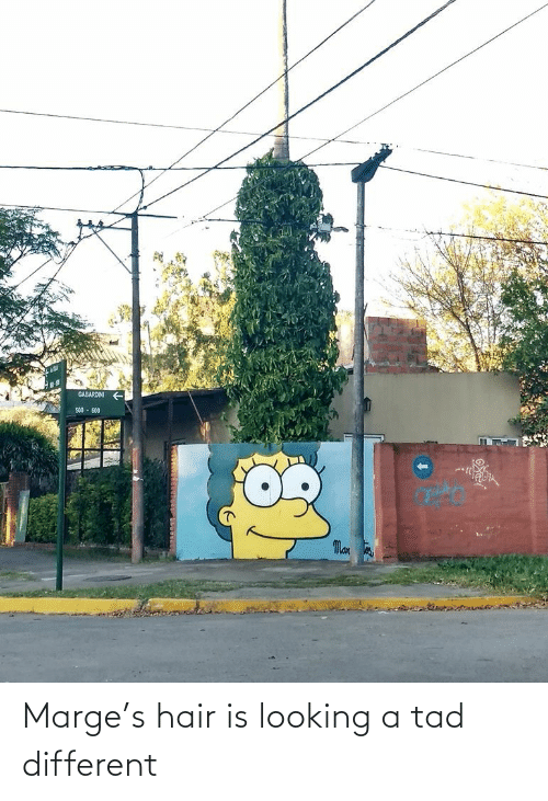 looking: Marge's hair is looking a tad different