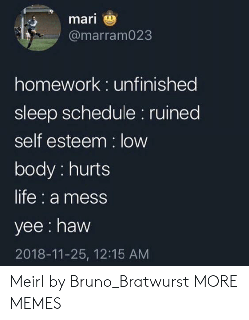 Dank, Life, and Memes: mari  @marram023  homework: unfinished  sleep schedule: ruined  self esteem: low  body: hurts  life: a mess  yee: haw  2018-11-25, 12:15 AM Meirl by Bruno_Bratwurst MORE MEMES