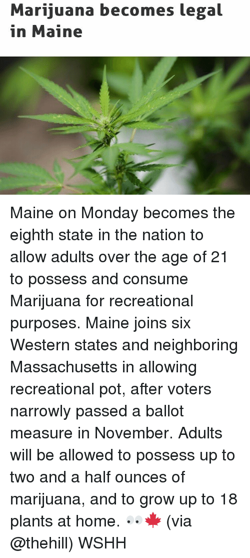 Memes, Massachusetts, and Western: Marijuana becomes legal  in Maine Maine on Monday becomes the eighth state in the nation to allow adults over the age of 21 to possess and consume Marijuana for recreational purposes. Maine joins six Western states and neighboring Massachusetts in allowing recreational pot, after voters narrowly passed a ballot measure in November. Adults will be allowed to possess up to two and a half ounces of marijuana, and to grow up to 18 plants at home. 👀🍁 (via @thehill) WSHH