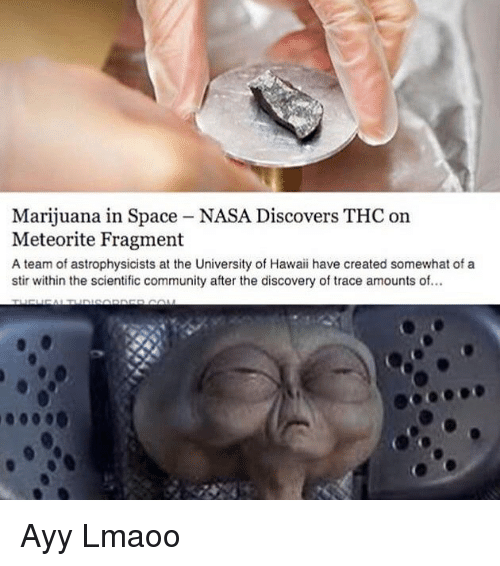 meteorite: Marijuana in Space - NASA Discovers THC on  Meteorite Fragment  A team of astrophysicists at the University of Hawaii have created somewhat of a  stir within the scientific community after the discovery of trace amounts of Ayy Lmaoo