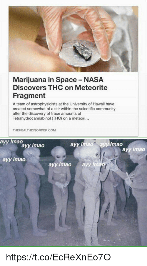meteorite: Marijuana in Space NASA  Discovers THC on Meteorite  Fragment  A team of astrophysicists at the University of Hawaii have  created somewhat of a stir within the scientific community  after the discovery of trace amounts of  Tetrahydrocannabinol THC) on a meteori  THEHEALTHDISORDER.COM   ayy lmao  ayy Imao ayy mao  ayy Imao  ayy lmao  ayy lmao  ayy lmao  ayy lim https://t.co/EcReXnEo7O