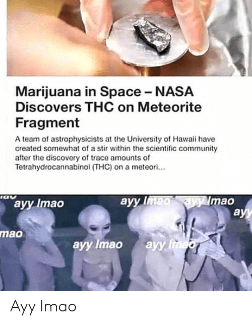 meteorite: Marijuana in Space NASA  Discovers THC on Meteorite  Fragment  A team of astrophysicists at the University of Hawaii have  created somewhat of a stir within the scientific community  after the discovery of trace amounts of  Tetrahydrocannabinol (THC) on a meteori...  ayy Imao  ayy  mao  mao  ayy Imao ayy Ayy lmao