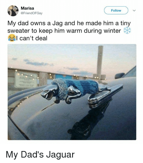 Dad, Winter, and Jaguar: Marisa  @FriendOFGay  Follow  My dad owns a Jag and he made him a tiny  sweater to keep him warm during winter  I can't deal My Dad's Jaguar