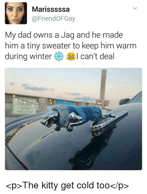Dad, Winter, and Cold: Marisssssa  @FriendOFGay  My dad owns a Jag and he made  him a tiny sweater to keep him warm  during winter尜. I can't deal <p>The kitty get cold too</p>