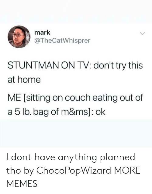 Dank, Memes, and Target: mark  @TheCatWhisprer  STUNTMAN ON TV: don't try this  at home  ME [sitting on couch eating out of  a 5 lb. bag of m&ms]: ok I dont have anything planned tho by ChocoPopWizard MORE MEMES