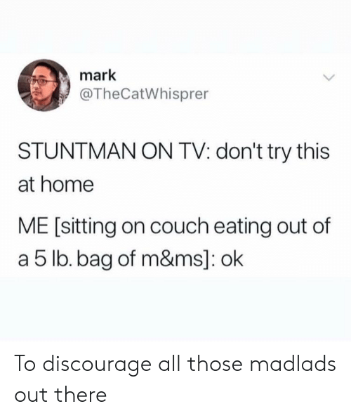 Couch, Home, and All: mark  @TheCatWhisprer  STUNTMAN ON TV: don't try this  at home  ME [sitting on couch eating out of  a 5 lb. bag of m&ms]: ok To discourage all those madlads out there