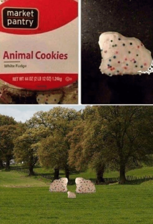 Cookies, Memes, and Animal: market  pantry  Animal Cookies  White Fudge  NET WT 44 02 (2 LB 12 02) 1.24kgp