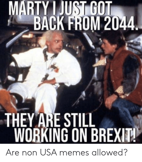 Usa Memes: MARTY I JUSİGOT  BACK FROM 2044  THEY ARE STILL  WORKING ON BREX Are non USA memes allowed?