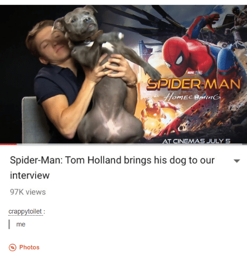 Toms: MARVE  SPIDER MAN  AT CINEMAS JULY 5  Spider-Man: Tom Holland brings his dog to our  interview  97K views  crappytoilet  me  Photos