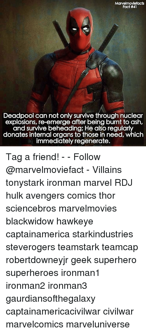 regenerate: Marvelmoviefacts  Fact #41  Deadpool can not only survive through nuclear  explosions, re-emerge after being burnt to ash,  and survive beheading, He also regularly  donates internal organs to those in need, which  immediately regenerate. Tag a friend! - - Follow @marvelmoviefact - Villains tonystark ironman marvel RDJ hulk avengers comics thor sciencebros marvelmovies blackwidow hawkeye captainamerica starkindustries steverogers teamstark teamcap robertdowneyjr geek superhero superheroes ironman1 ironman2 ironman3 gaurdiansofthegalaxy captainamericacivilwar civilwar marvelcomics marveluniverse