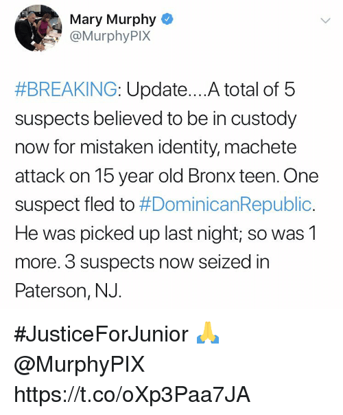 machete: Mary Murphy  @MurphyPIX  #BREAKING: Update A total of 5  suspects believed to be in custody  now for mistaken identity, machete  attack on 15 year old Bronx teen. One  suspect fled to #DominicanRepublic.  He was picked up last night; so was1  more. 3 suspects now seized in  Paterson, NJ. #JusticeForJunior 🙏 @MurphyPIX https://t.co/oXp3Paa7JA