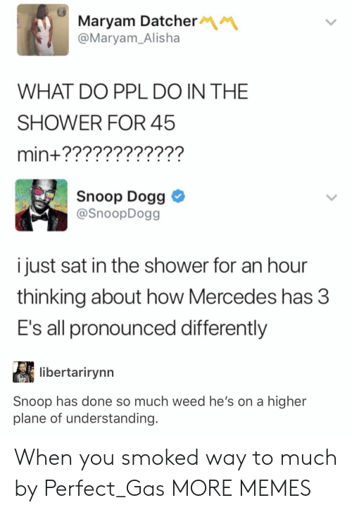 Mercedes: Maryam Datcher  @Maryam_Alisha  WHAT DO PPL DO IN THE  SHOWER FOR 45  min+????????????  Snoop Dogg  @SnoopDogg  i just sat in the shower for an hour  thinking about how Mercedes has 3  E's all pronounced differently  libertarirynn  Snoop has done so much weed he's on a higher  plane of understanding. When you smoked way to much by Perfect_Gas MORE MEMES